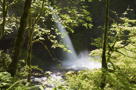 Beautiful Image of a flowing waterfall on Ainsworth Hiking Trail. photo