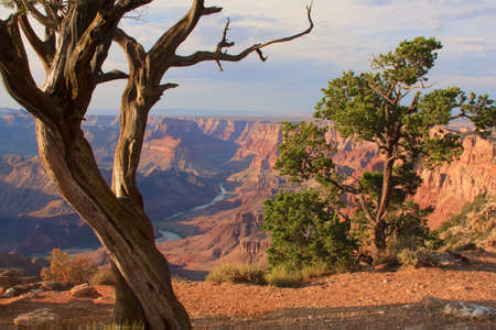 southwest: Beautiful Landscape of Grand Canyon from Desert View Point with the Colorado River visible during dusk