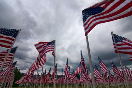 A patriotic arrangement of american flags representing fallen soldiers with each individual flag. Stock Photo - 13851263