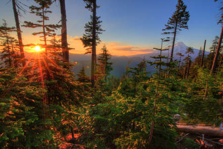 Majestic View of Mt  Hood on a bright, sunny day during the summer months Stock Photo - 14691238