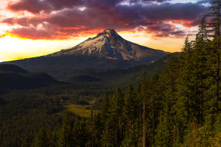 mt  hood national forest: Majestic View of Mt  Hood on a bright, sunny day during the summer months
