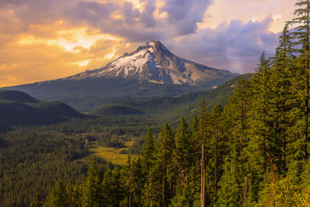 mount hood national forest: Majestic View of Mt  Hood on a bright, sunny day during the summer months