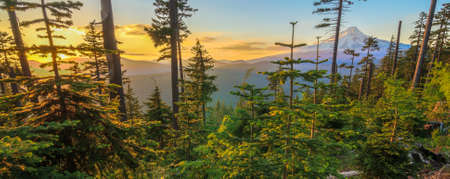 mt  hood national forest: Majestic View of Mt. Hood on a bright, sunny day during the summer months. Stock Photo