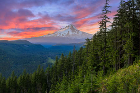 oregon cascades: Majestic View of Mt. Hood on a bright, colorful sunset during the summer months.