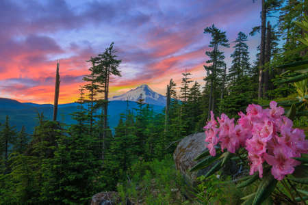 Majestic View of Mt. Hood on a bright, colorful sunset during the summer months.