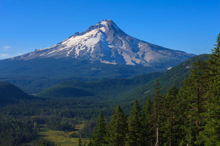 mount hood national forest: Majestic View of Mt. Hood on a bright, sunny day during the summer months