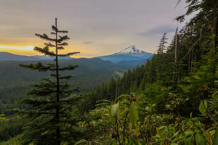 hood: Majestic View of Mt. Hood on a bright colorful sunset during the summer months. Stock Photo