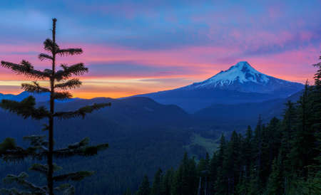 mt  hood: Majestic View of Mt. Hood on a bright colorful sunset during the summer months. Stock Photo