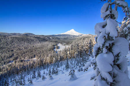 oregon  snow: Majestic View of Mt. Hood on a bright, sunny day during the Winter months.