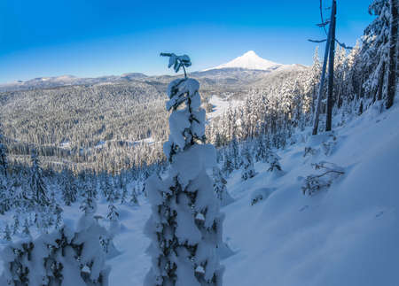 mount: Majestic View of Mt. Hood on a bright, sunny day during the Winter months.