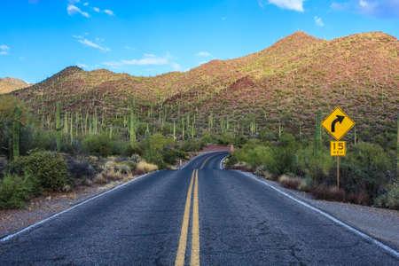 Amazing Image of Saguaro National Park Stock Photo