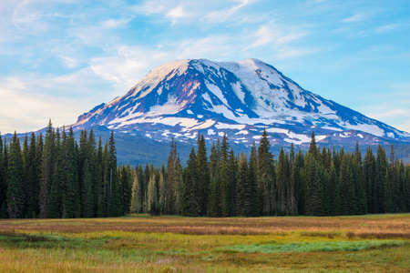 Amazing Vista of Mt. Adams in Washington State
