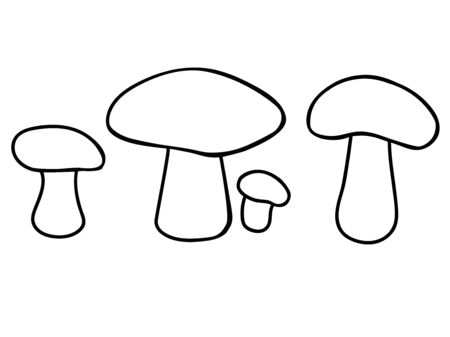 Edible mushrooms. Set of mushrooms of different sizes and shapes. Linear vector coloring picture - mushrooms. Outline hand drawing