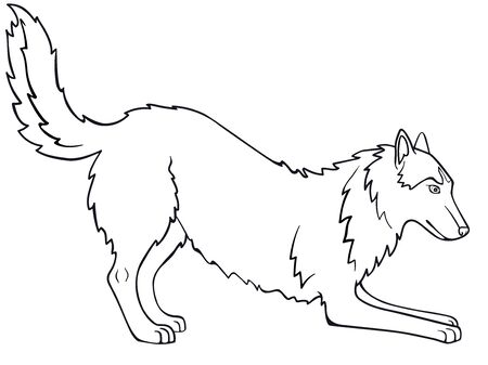 Siberian Husky, Alaskan Malamute. The dog is playing. Line drawing. For coloring. Outline hand drawing Illustration