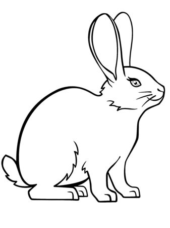 Cute, small, fluffy rabbit. Easter bunny. The pet is a decorative rabbit. Bunny. Rabbit. Linear drawing of a bunny. Template for coloring. Outline hand drawing