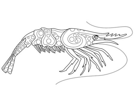 Shrimp coloring book antistress - vector linear picture for coloring. Sea animal - shrimp - antistress for marine coloring book. Outline Hand drawing.