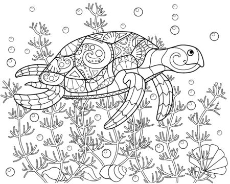 Turtle swimming among algae, shells and bulbs - vector linear horizontal coloring page. Coloring book picture underwater world - sea turtle is swimming. Coloring book antistress with a turtle. 向量圖像