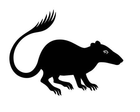 Purgatorius - extinct prehistoric primate - ancestor of apes and humans