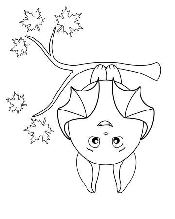Cute fat bat hanging upside down on a maple branch. vector linear illustration for coloring. Outline. A bat on an autumn tree getting ready for bed.