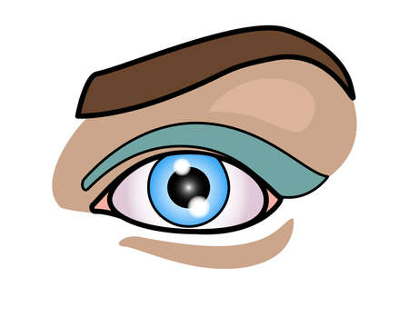 Girl's eye and eyebrow - full color stock illustration. Beautiful female eye with makeup. Blue eyes with blue shadows. Eye makeup.
