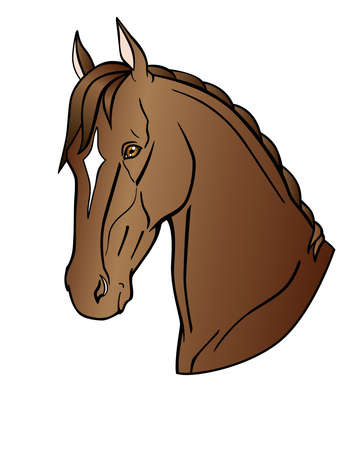 Graceful head of a bay horse. Akhal-Teke horse - vector full color illustration. Stallion of the Eastern breed with a white mark on the forehead. Portrait of an expensive thoroughbred stallion Vettoriali