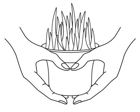 Hands holding a pot with a plant - vector linear illustration for coloring. Outline. A pot with herbs in hand - gardening and home plants. Grass in pots.
