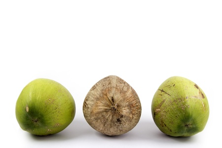 contrasts: Juxtapose - Three of Coconut with Differences brown in Middle