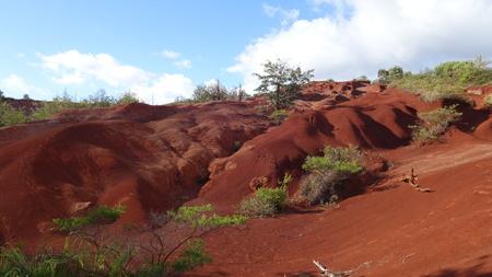 Martian-line landscape nearby Waimea Canyon (Kauai, HI, USA) 版權商用圖片
