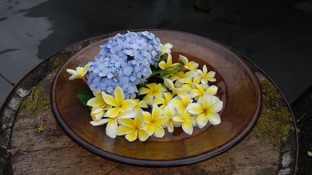 Ceramic plate with blue and yellow Hawaiian flowers (Big Island, HI, USA) 版權商用圖片