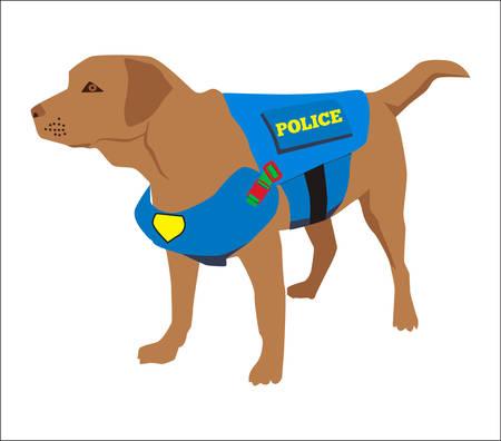Cartoon labrador police dog trains. Cute professional police dog wearing uniform on service. Vector illustration