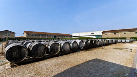 wine barrels with vermuth Stock Photo - 10756800