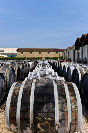 wine barrels with vermuth photo