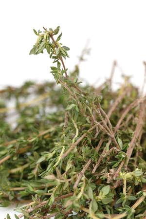 Fresh Thyme on white background Stock Photo - 12880101