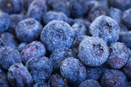 Wet Fresh Blueberries Berries closeup, backdrop photo