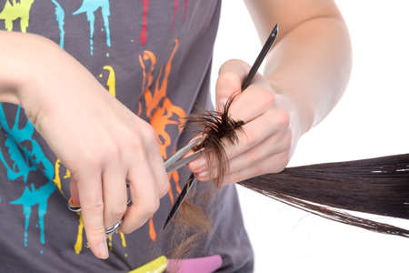 Young woman having a hair cut with a hairdresser trimming her fringe on her long brunette hair, isolated on white photo
