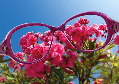 View from reading eyeglasses on beautiful nature view, healthy eyesight concept  photo