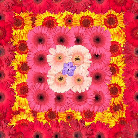 Seamless Pattern from Vibrant Gerbera Flowers, Wallpaper photo