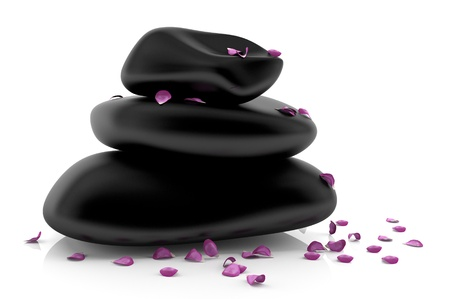 Spa stones with flower petals - 3d model photo