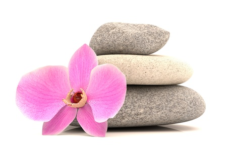 Spa stones with orchid. 3d model isolated on white background Stock Photo