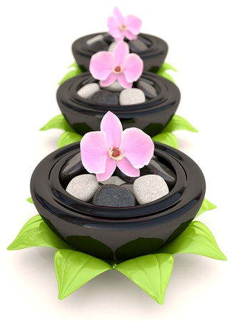 Spa stones with flowers and leaves. 3D concept photo