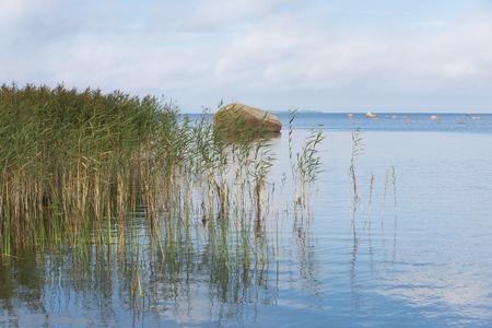 estonia: Lahemaa National Park in Estonia
