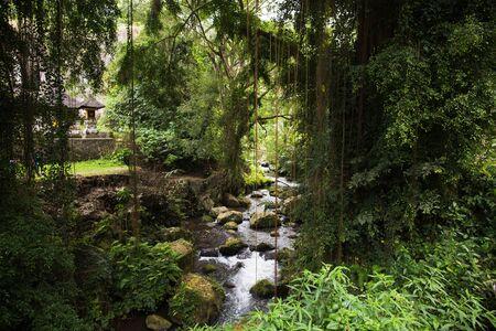 발리의 구 K 카위 (Gunung Kawi) 사원에서 강