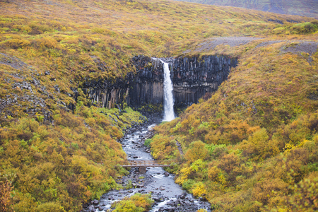 Svartifoss, Black Waterfall in Autumn, Iceland