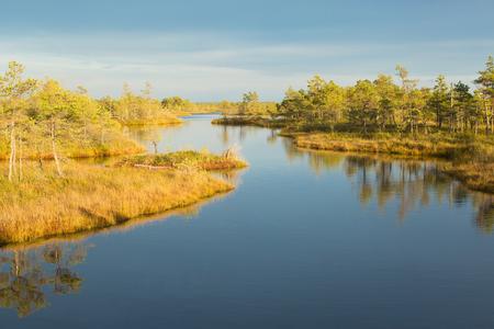 Scenic landscape in the morning on the Marsh in Kemeri