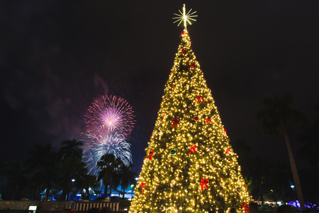 New year tree and firework in new year celebration at Bayfront park in Miami Downtown.