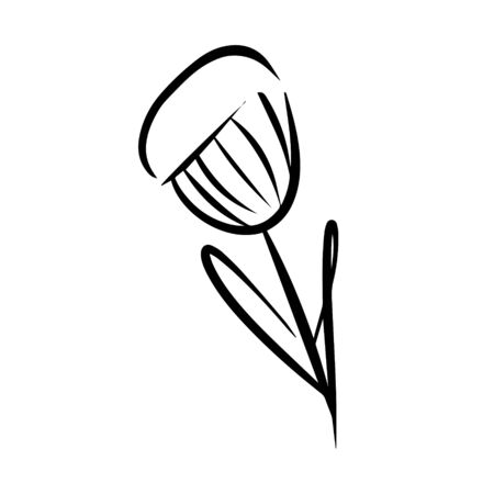Flower doodle, cartoon, hand draw, isolated on a white background for packaging design, print on fabric, card, postcard, notebook, notepad, wallpaper. Bio, organic, natural. For cosmetics.