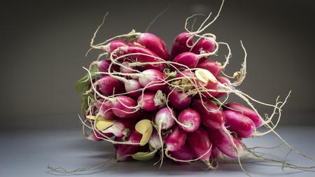 sorts: radish in black background Stock Photo