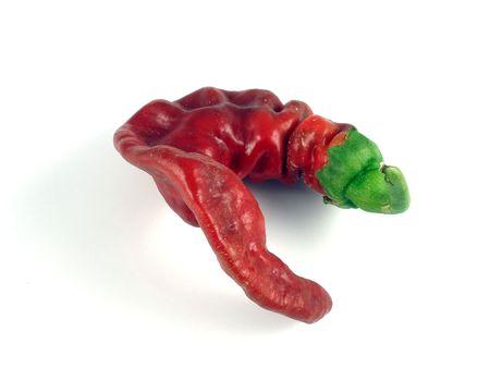 Brilliant star chile pepper