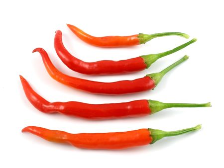 Hot cayenne chile peppers