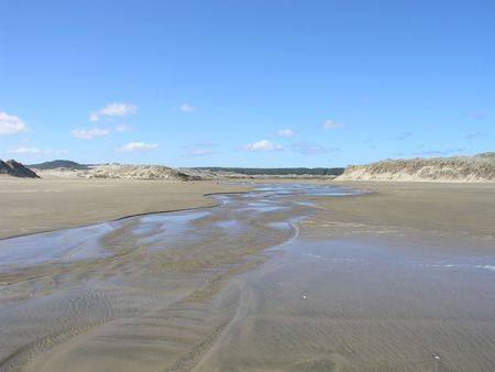 mile: Ninety Mile Beach, North Island, new Zealand